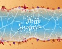 De zomerthema met zeester en shells op het strand Stock Foto's