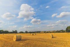 De zomertijd - Woodend - het UK royalty-vrije stock foto's