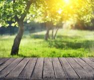 De zomertuin en houten plank stock afbeelding