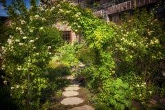 De zomertuin en weg royalty-vrije stock afbeeldingen