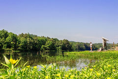 De zomeruitje in het Eiken Park van de Bergstaat royalty-vrije stock foto