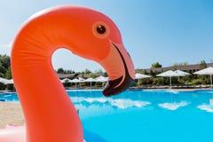 De zomervakantie door de pool met een opblaasbaar stuk speelgoed Stock Afbeelding