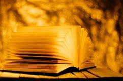 De zomerverhaal, boek op gouden trillende achtergrond Stock Fotografie