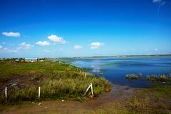 De zomervloed 2013 op de meer hulunbeier toelageweide Royalty-vrije Stock Foto's
