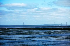 De zomervloed 2013 op de meer hulunbeier toelageweide Stock Foto