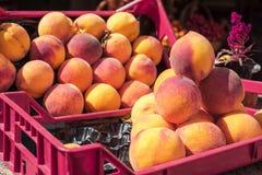 De zomervruchten in doos Zonnige de zomerdag Gezonde voedselfoto royalty-vrije stock afbeelding