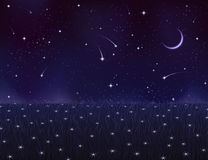 De zomerweide van de nacht die met sterbloemen wordt behandeld Stock Fotografie