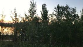 De zomerzonsondergang op een stil meer stock videobeelden