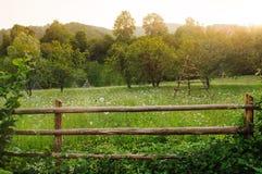 De zomerzonsondergang over een groen gebied in Roemenië Royalty-vrije Stock Afbeeldingen