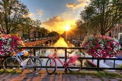 De zomerzonsopgang van Amsterdam Royalty-vrije Stock Afbeelding