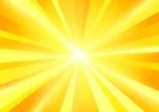 De zon barstte stralenachtergrond Stock Foto
