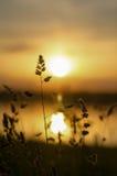 De zon bij zonsondergang Stock Foto's