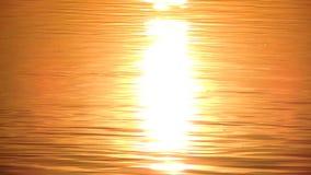 De zon denkt in het water van de meerrivier, zonsondergang, zonsopgang na stock footage