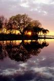 De zon en de boombezinning van de zonsondergang Stock Foto's