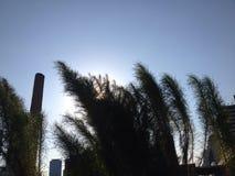 De zon en de wind in een grote stad als dat vereisen geduld en gevoeligheid overleven om het leven in de steden te herinneren Royalty-vrije Stock Afbeeldingen