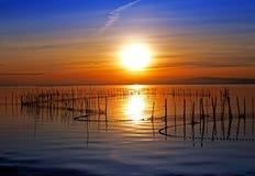De zon en het overzees stock foto