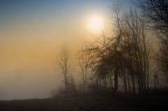 De zon gaat door Stock Foto
