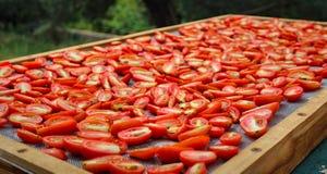 In de zon gedroogde Tomaten die in de zon in het Middellandse-Zeegebied drogen stock afbeeldingen
