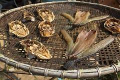 In de zon gedroogde vissen Stock Foto's
