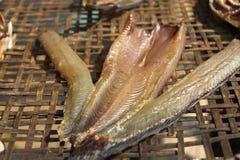 In de zon gedroogde vissen Royalty-vrije Stock Foto's