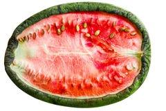 In de zon gedroogde watermeloen Stock Afbeeldingen