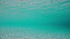De zon glanst in het water stock videobeelden