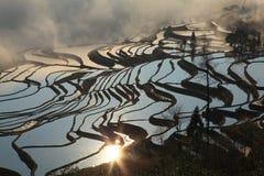 De zon glanst op het terras Hani paddyfield stock fotografie