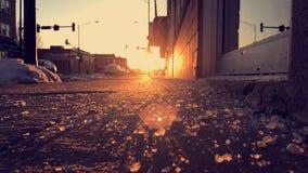 De zon glanst is wat deze wereld houdt Stock Foto's