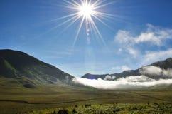 De zon goot uit de mist in sabana stock foto