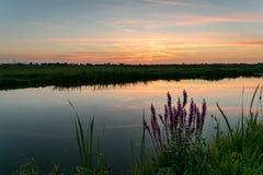 De zon heeft over het Nederlandse landschap van de polder, dicht bij Gouda, Holland geplaatst royalty-vrije stock fotografie