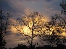De zon heft op Royalty-vrije Stock Afbeeldingen