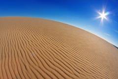 De zon over de woestijn Stock Afbeeldingen