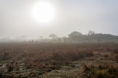 De zon probeert om door de dichte mist op het eiland Schiermonnikoog te glanzen royalty-vrije stock foto