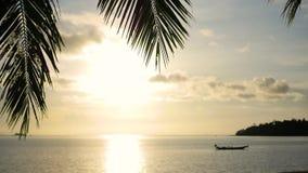 De zon` s stralen die door de palm overgaan vertakken zich Tropische bomen op de tijd van de kustzonsondergang stock videobeelden