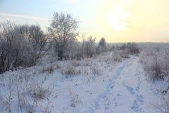 De zon van de de winterdageraad en sneeuwsleep Stock Afbeeldingen