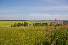 De zon van de het gebiedshemel van Rusland ` s Royalty-vrije Stock Afbeeldingen