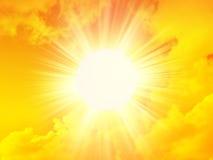 De zon van de ochtend Stock Foto