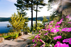 De zon van de ochtend op het meer Stock Foto