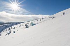 De zon van de winter Stock Foto