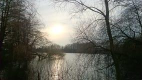 De zon van de winter Royalty-vrije Stock Foto