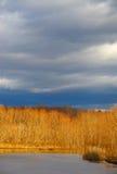 De zon van de winter over meer Stock Foto's