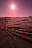 De Zon van de woestijn Royalty-vrije Stock Foto's