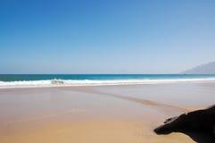 De zon van de zomer op het duidelijke strand Royalty-vrije Stock Foto's