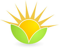 De zon van het blad stock illustratie