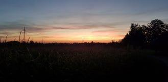 De Zon van de ochtend stock afbeeldingen
