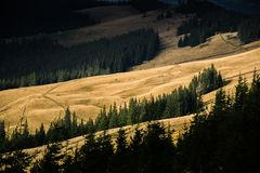De zon verlicht de Karpatische berg royalty-vrije stock foto's
