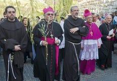 De zondag van de Palm van Jeruzalem Royalty-vrije Stock Afbeelding