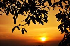 De zonhemel van de zonsondergang stock foto's