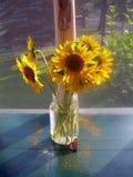 De zonnebloemen van de goedemorgen stock afbeeldingen