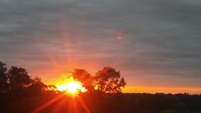 De zonnen glanzen Stock Afbeeldingen